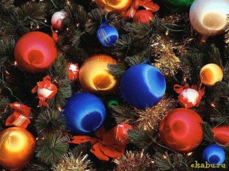 Поздравление министра образования Калининградской области Светланы Сергеевны Трусенёвой с Новым 2014 годом и Светлым Рождеством Христовым