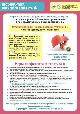 Профилактика вирусного гипатита А